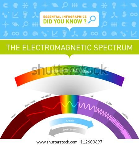 Vector Infographic - The Electromagnetic Spectrum - stock vector
