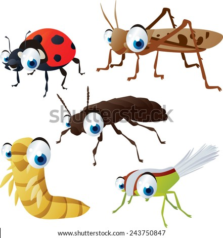 vector isolated cartoon cute animals set: insects: ladybug, locust, mealworm, xylodromus, planthopper - stock vector