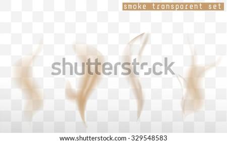 Vector isolated image of brown  transparent smoke. Smoke set. - stock vector
