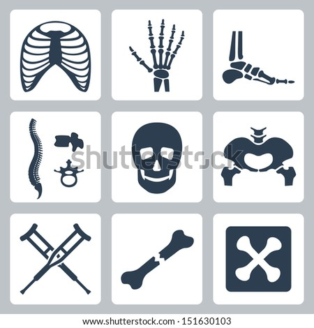 Vector isolated skeleton icons set - stock vector