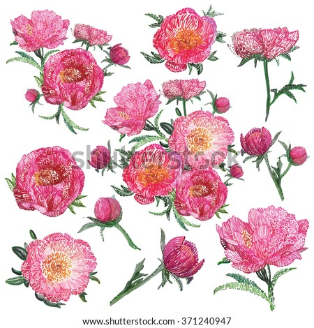 Vector isolated stylized embroidery flowers decorations set. Vintage stitching embroidery rose peony flowers pink peonies on white background. Beautiful embroidery floral isolated decorative elements - stock vector