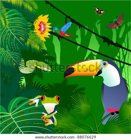Vector Jungle with Frog, Toucan, humming-birds, butterflies and Green Snake - stock vector