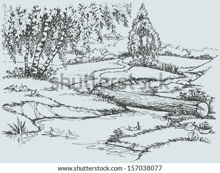 Vector landscape. Birch trees near the trail over the creek  - stock vector