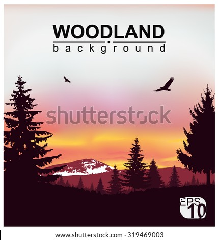 Vector landscape. Silhouette of coniferous trees on the background of snowy mountains and colorful sky. Sunset. Flying eagles. Eps 10. - stock vector
