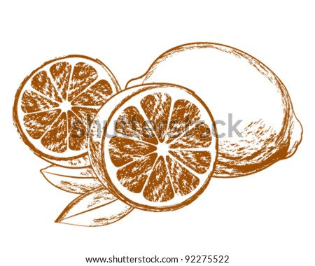 Vector Lemons with leaves - stock vector