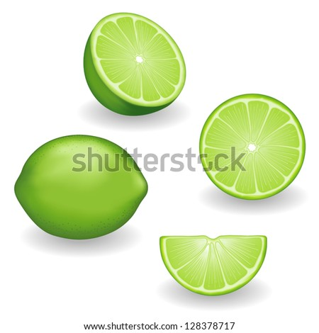 vector - Limes, four views: whole, half, slice, wedge. Fresh, natural fruit. Graphic illustrations isolated on white background. Includes gradient mesh.    - stock vector