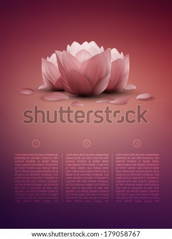 vector lotus flower in a soft background  - stock vector