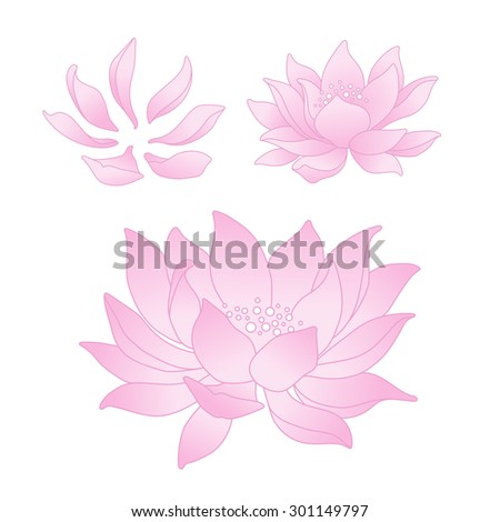 Vector lotus flowers and petals - stock vector