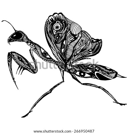 Vector mantis with patterns - stock vector