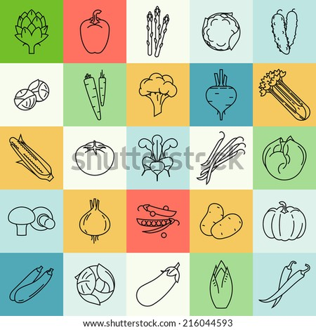 Vector modern flat design vegetables and green salads line square colorful icons | Set of contour vegetable clip art featuring endive, beetroot, brussels sprouts, zucchini, iceberg lettuce, and more - stock vector