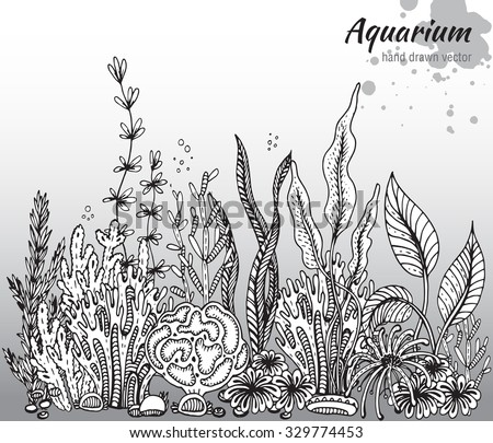 Vector monochrome hand drawn illustration with aquarium algae, corals. Underwater world. Black and white hand drawn illustration - stock vector