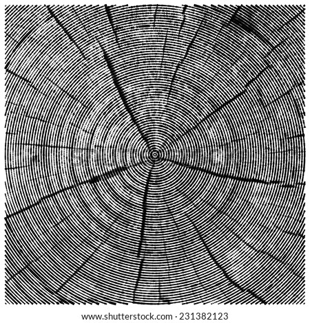 vector natural illustration of engraving saw cut tree trunk. abstract sketch of wood texture - stock vector