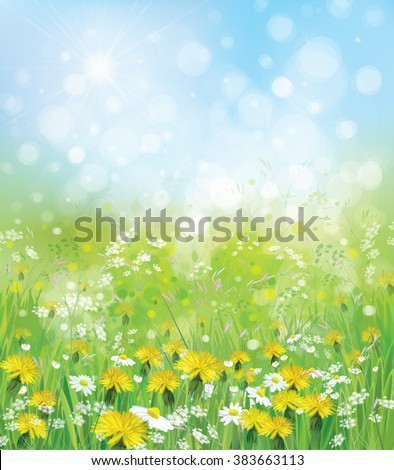 Vector  nature background with chamomiles and dandelions. - stock vector