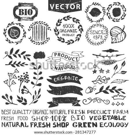 Vector nature bio  logo template.Badges,labels,floral elements,wreaths and laurels.Organic,natural design .Hand drawing Vintage silhouette vector,ink sketch.Logotype maker,lettering. - stock vector