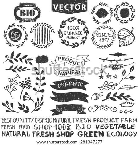 Vector nature bio  logo template.Badges,labels,floral elements,wreaths and laurels.Organic,natural design .Hand drawing Vintage silhouette vector,ink sketch.Logotype maker,lettering. - stock vector