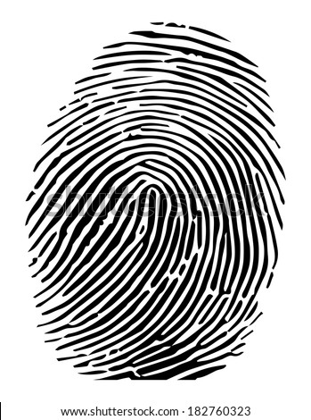 Vector of a fingerprint - stock vector