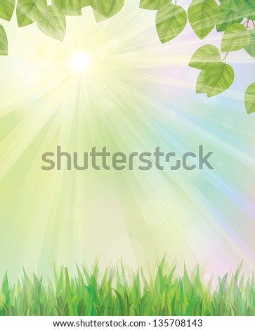 Vector of green leaves  and grass on sunny sky background. - stock vector