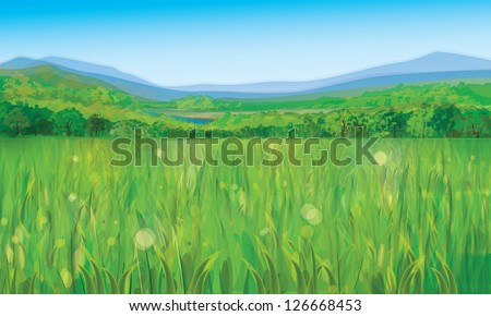 Vector of summer landscape - stock vector