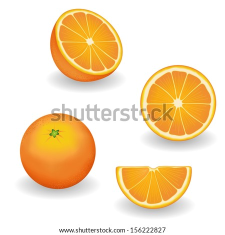 vector - Oranges, four views: whole, half, slice, wedge. Fresh, natural, organic, vegetarian food. Graphic illustrations isolated on white background. EPS8 includes gradient mesh.     - stock vector