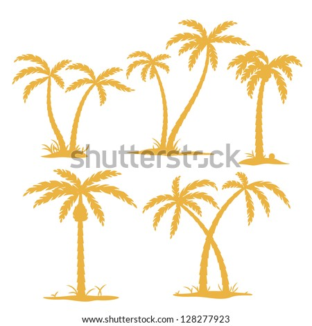 Vector Palm tree Contours isolated on white - stock vector