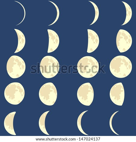 vector phases of the moon  - stock vector