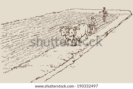 Vector picture. Primitive agriculture ancient Asian and African world: Egypt, Assyria, Babylon, India, China. One farmer plows land plot pulled on a pair of oxen. Second sows wheat grain plowed field - stock vector