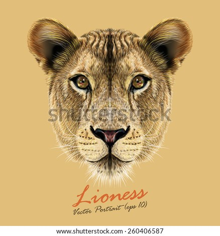 Vector Portrait of a Lioness. Cute and beautiful big cat face. - stock vector