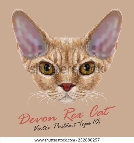 Vector Portrait of Devon Rex Cat. Cute young orange domestic cat with yellow eyes. - stock vector
