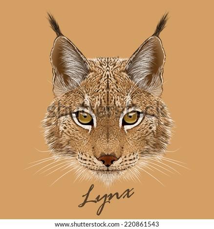 Vector portrait of Lynx cat. - stock vector
