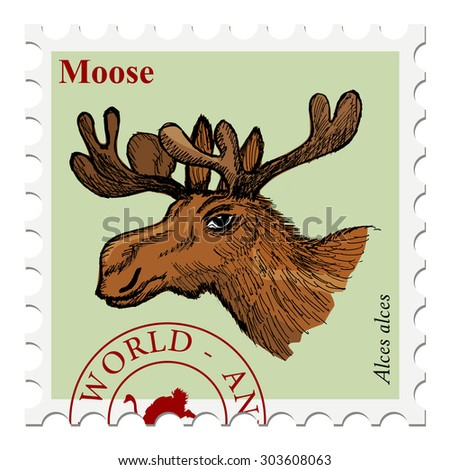 vector, post stamp with moose, wildlife motive - stock vector
