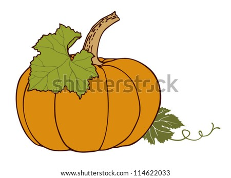 vector pumpkin isolated on white background - stock vector