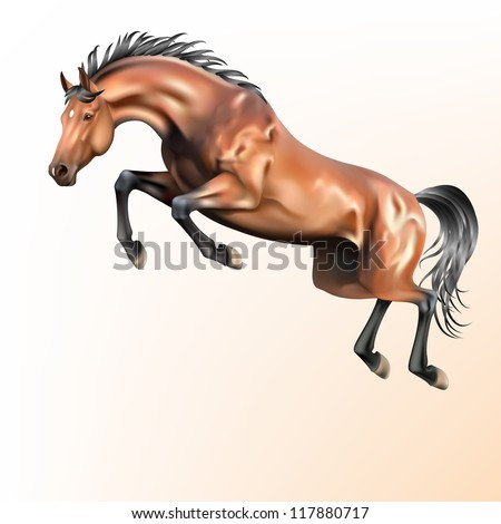 Vector realistic jumping horse - stock vector