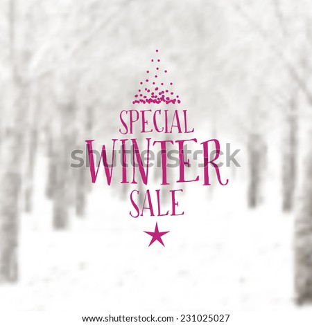 Vector Retro Winter banner typography. Winter sale Label with christmas decoration in blurred landscape background.  - stock vector