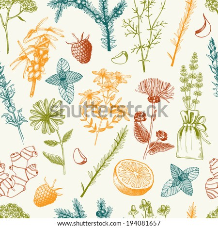 Vector seamless pattern with hand drawn medical herbs and spices.  - stock vector