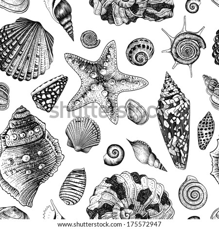 Vector seamless vintage pattern with black and white seashells on white background. - stock vector