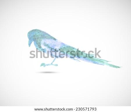 Vector  series of watercolor drawn wild animal - magpie. - stock vector