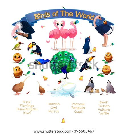 """vector Set """"Birds of the World"""" addition to series of English ABC """"Amusing Animals"""". List words birds. Baby shower. School manual for teachers. Clipart isolated on white background. EPS 10 - stock vector"""