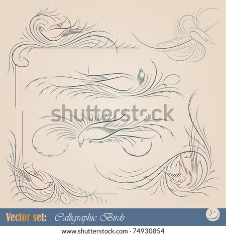 Vector set: calligraphic birds elements for page decoration and design - stock vector
