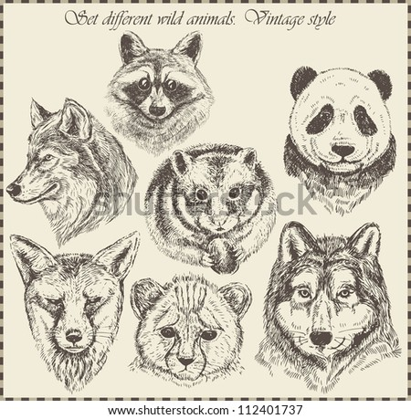vector set: different wild animals - various vintage style. - stock vector