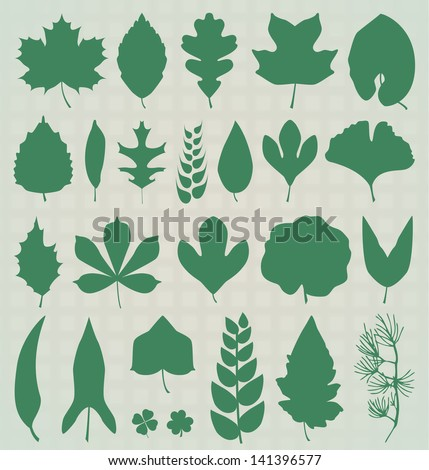 Vector Set: Leaf Silhouettes - stock vector
