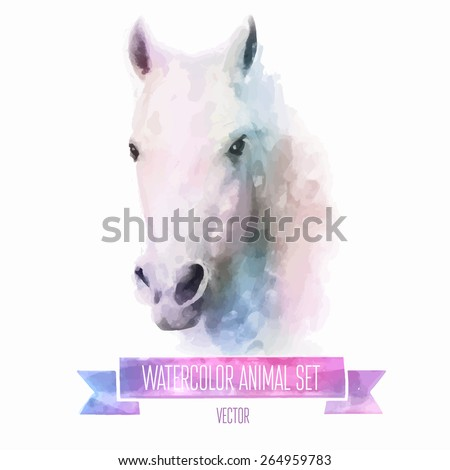 Vector set of animals. Horse hand painted watercolor illustration isolated on white background - stock vector