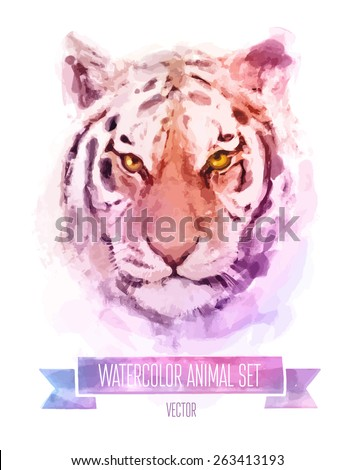 Vector set of animals. Tiger hand painted watercolor illustration isolated on white background - stock vector