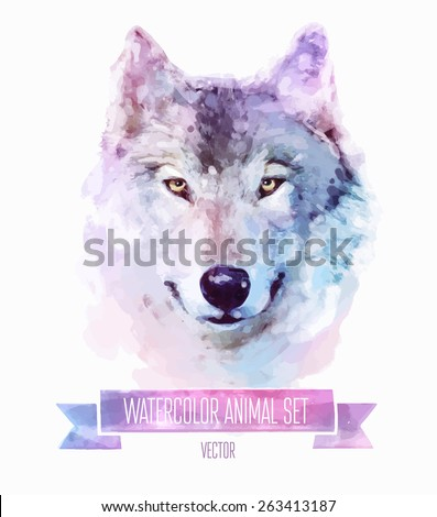 Vector set of animals. Wolf hand painted watercolor illustration isolated on white background - stock vector