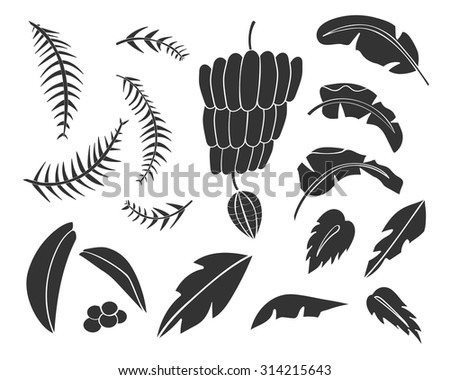 Vector set of black silhouettes of tropical leaves, palm trees, foliage. Hand drawn design elements. Tropical nature. Stylized images and simple shapes for logos and natural decor. Black simple icons  - stock vector