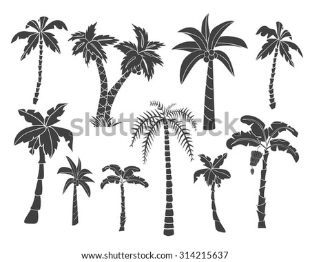 Vector set of black simple icons of tropical leaves, palm trees, foliage. Hand drawn design elements of a tropical nature. Stylized images and simple shapes for logos and natural decor. - stock vector