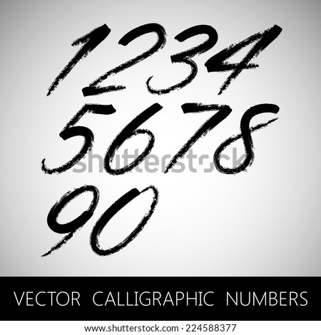 vector set of calligraphic marker or ink numbers  - stock vector