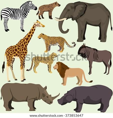 Vector set of cartoon african animals. Safari animals: hyena,hippopotamus,rhinoceros, elephant,giraffe, zebra,wildebeest, lion, leopard, cheetah. - stock vector