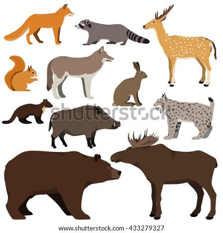Vector set of cartoon forest animals. Brown bear, raccoon, squirrel, spotted deer, lynx, marten, wild boar, moose, wolf, fox, hare. - stock vector