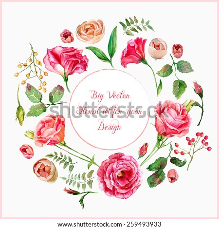 Vector set of different red, pink flowers for design. Watercolor roses, leaves. Floral elements to create compositions.  - stock vector