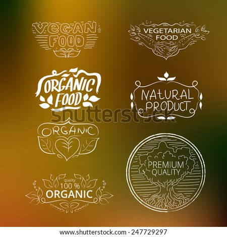 Vector set of elements vegetarian food, vegan food, organic food, natural food. Collection of logos on nature background.  - stock vector